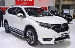 Xe ô tô nhập khẩu giảm mạnh trong tháng 6