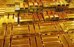 Giá vàng trong nước tiếp tục lập đỉnh mới: 50,47 triệu đồng/lượng