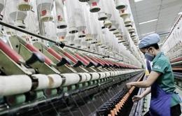Fitch: Việt Nam có khả năng phục hồi kinh tế vượt trội ở châu Á