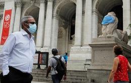 Hơn 11,7 triệu người nhiễm COVID-19 trên toàn cầu