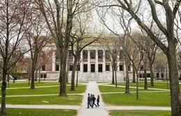 Sinh viên quốc tế đóng góp thế nào cho nền kinh tế Mỹ?