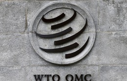 """Cuộc đua trở thành tân Tổng Giám đốc của WTO bước vào """"vòng chung kết"""""""