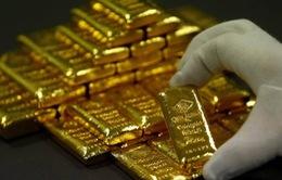 Giá vàng trong nước đứng yên bất chấp giá vàng thế giới lao dốc