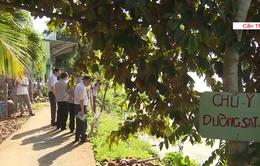 Thiệt hại hơn 16 tỷ đồng do sạt lở ở Cần Thơ