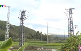 Phú Yên: Tiến độ đưa điện về xã Đảo Nhơn Châu ảnh hưởng