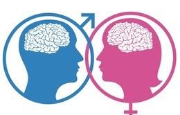 Não bộ của nam giới và nữ giới có khác nhau không?