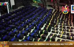 Colombia triệt phá các đường dây buôn bán ma túy lớn