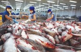 Doanh nghiệp tự chứng nhận xuất xứ hàng hóa xuất khẩu sang EU