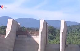 Phú Yên: Chuyển đổi hơn 176ha đất rừng làm hồ chứa nước