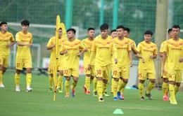 ĐT Việt Nam đá giao hữu với U22 Việt Nam trong tháng 12/2020