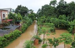 Mưa lớn gây ngập úng cục bộ tại Yên Bái