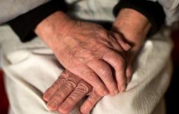 Bộ xét nghiệm nhanh phát hiện bệnh Alzheimer
