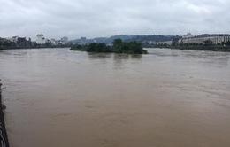 Lào Cai cảnh báo lũ trên sông Hồng dâng cao do xả lũ từ Trung Quốc