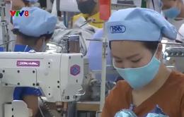 Thừa Thiên - Huế: Gắn sản xuất  kinh doanh với công tác phòng chống dịch