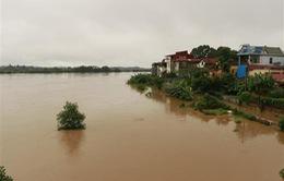 Lũ sông Thao qua đỉnh