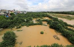 Mực nước sông Hồng lên nhanh, nguy cơ ngập lụt vùng trũng và bãi bồi