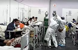 13 người thiệt mạng khi tháo chạy khỏi một hộp đêm vi phạm quy định phòng dịch bệnh COVID-19 tại Peru
