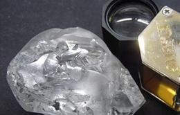 Tìm thấy viên kim cương 442 carat trị giá hàng trăm tỷ VND