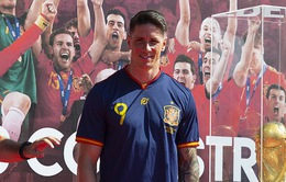 Fernando Torres xác định hướng đi cho tương lai