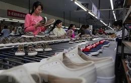 Việt Nam là đối tác kinh tế lý tưởng của Australia
