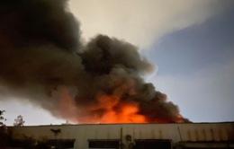 Cháy lớn kho xưởng bên trong khu công nghiệp Tân Tạo, TP. HCM