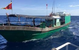Tàu cá Trung Quốc đánh bắt hải sản trái phép trên biển Quảng Trị