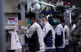 """Trung Quốc nhượng bộ, cho phép Mỹ kiểm toán những công ty """"nhạy cảm"""""""