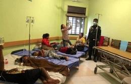 Dịch sốt Chikungunya ở Campuchia không phải bệnh lạ
