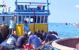 Ngư dân Lý Sơn ứng dụng khoa học kỹ thuật vào đánh bắt hải sản