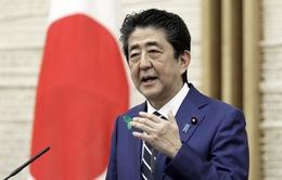 Thủ tướng Nhật Bản Abe Shinzo có thể sẽ công bố từ chức vào chiều nay