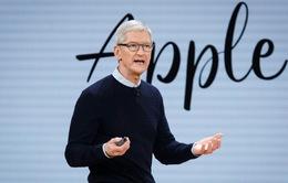 Tim Cook nhận hơn 278 triệu USD tiền thưởng từ Apple