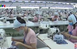 Quảng Nam: Doanh nghiệp vượt khó duy trì sản xuất