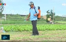 Ngăn chặn lạm dụng thuốc bảo vệ thực vật