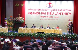 Đẩy mạnh tái cơ cấu, phục hồi, phát triển và khẳng định vị thế Tổng công ty Hàng không Việt Nam
