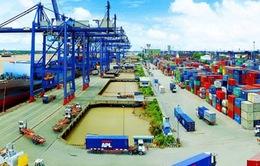 8 tháng đầu năm, Việt Nam xuất siêu gần 12 tỷ USD