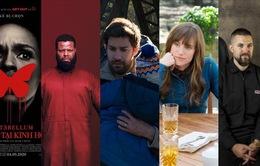 Bỏ túi ngay 5 siêu phẩm đột phá đáng nể của dòng phim kinh dị hiện đại