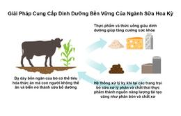 Cách bảo vệ môi trường đặc biệt của ngành sữa Mỹ