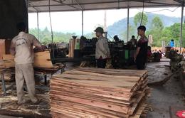 Tháo gỡ khó khăn cho doanh nghiệp xuất khẩu gỗ