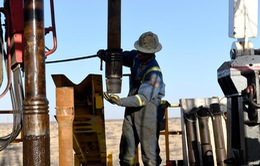 Giá dầu thế giới đi xuống do triển vọng nhu cầu ảm đạm