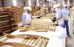 Bất chấp dịch COVID-19, xuất khẩu gỗ và sản phẩm gỗ vẫn tăng trưởng