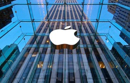 CNBC: Không có lý do để phải vội vàng mua cổ phiếu của Apple sau khi chia tách