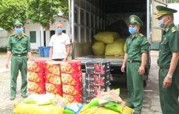 Bắt giữ, tiêu hủy hơn 1 tấn trái cây, đồ chay đang phân hủy được nhập lậu vào Việt Nam