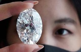 Viên kim cương to bằng quả trứng sẽ được bán đấu giá 30 triệu USD
