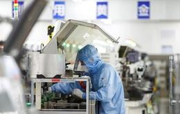 Bị Mỹ gây sức ép, Trung Quốc quyết tự chủ trong công nghệ bán dẫn