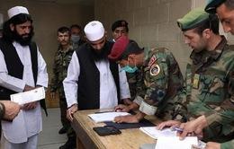 Hòa đàm Afghanistan - Taliban: Thời khắc quan trọng trong gần 2 thập kỷ xung đột bạo lực