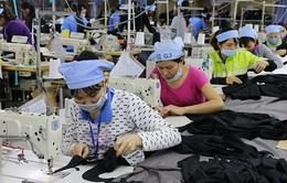 Dịch COVID-19 lần 2: 76% doanh nghiệp không cân đối được thu chi
