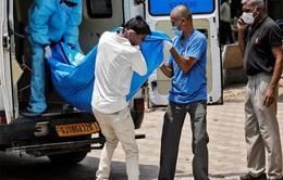 Thế giới ghi nhận hơn 29,4 triệu ca mắc COVID-19, Ấn Độ hiện là tâm dịch nóng nhất toàn cầu