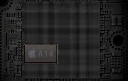 """Apple Silicon - Bước tiến mới đầy tham vọng của """"Táo khuyết"""""""