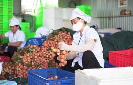 Tăng cường thương mại nông sản Việt Nam - Trung Quốc