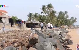 Phú Yên phê duyệt dự án xử lý khẩn cấp sạt lở bờ biển Mỹ Quang Nam